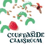 The Educator ad